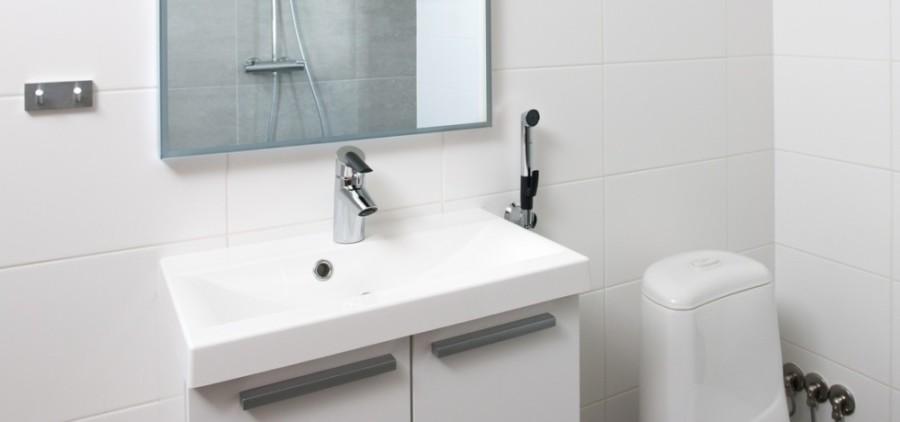 Baterie umywalkowe z funkcją prysznica - z rączką Bidetta